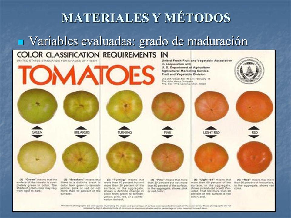 MATERIALES Y MÉTODOS Variables evaluadas: grado de maduración