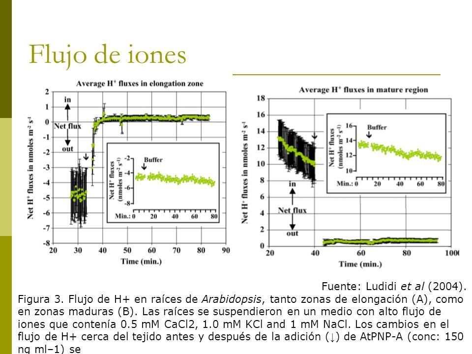 Flujo de iones Fuente: Ludidi et al (2004).