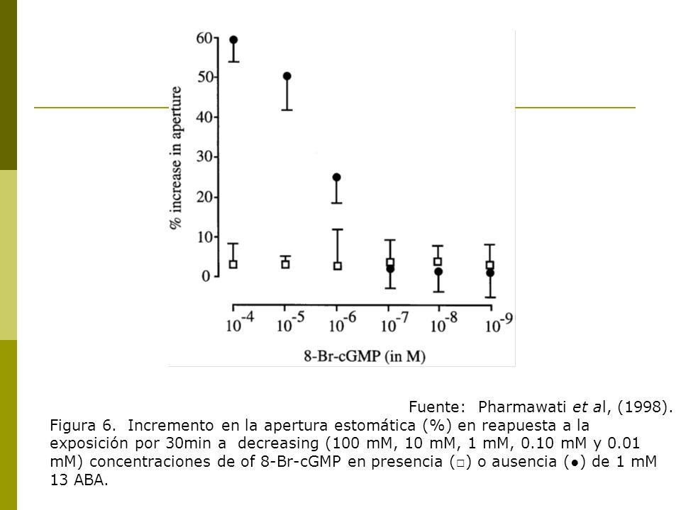 Fuente: Pharmawati et al, (1998).