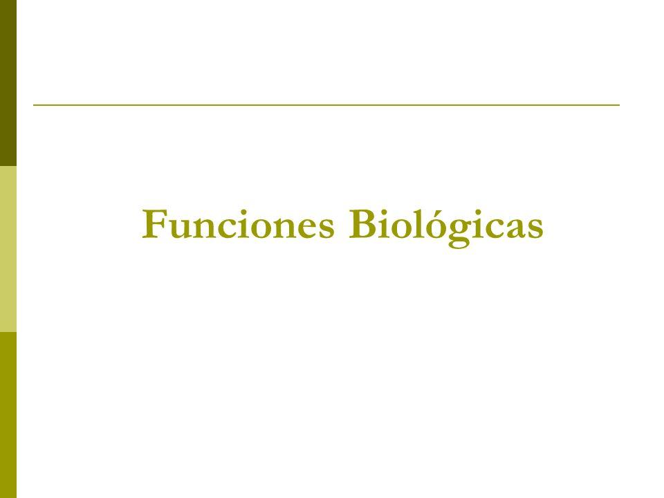 Funciones Biológicas