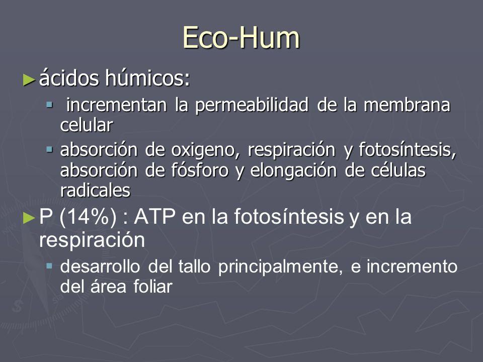 Eco-Hum ácidos húmicos: