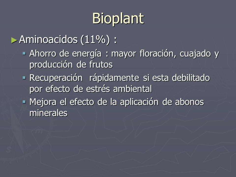 Bioplant Aminoacidos (11%) :