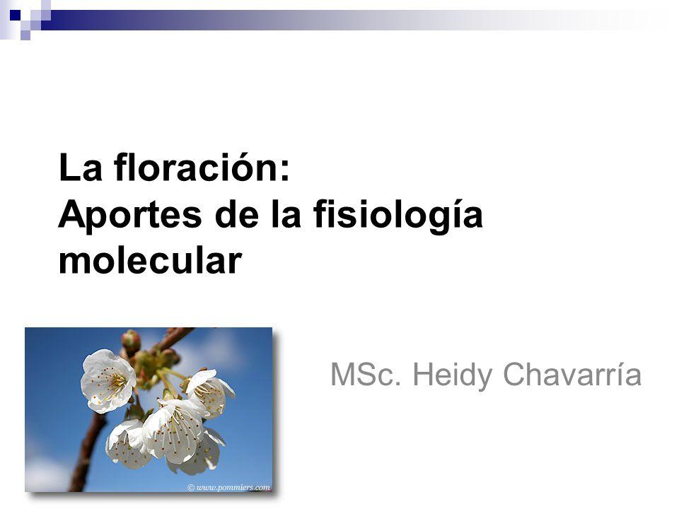 La floración: Aportes de la fisiología molecular