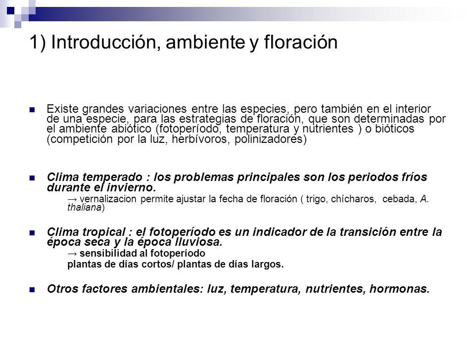1) Introducción, ambiente y floración