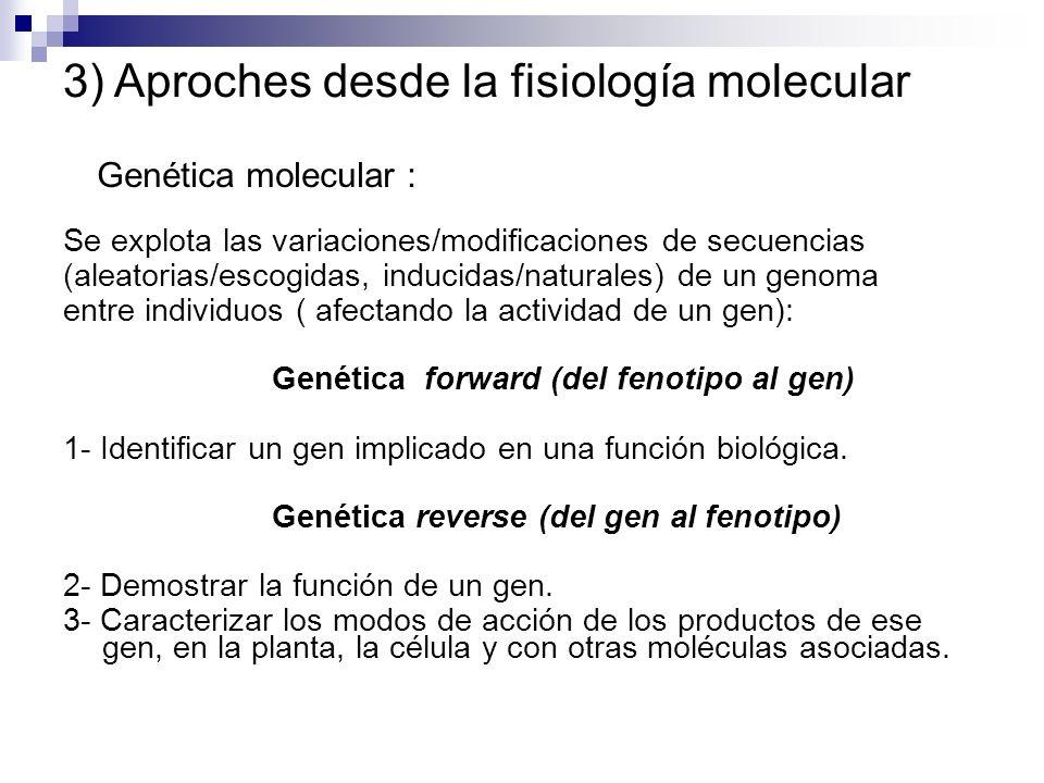 3) Aproches desde la fisiología molecular