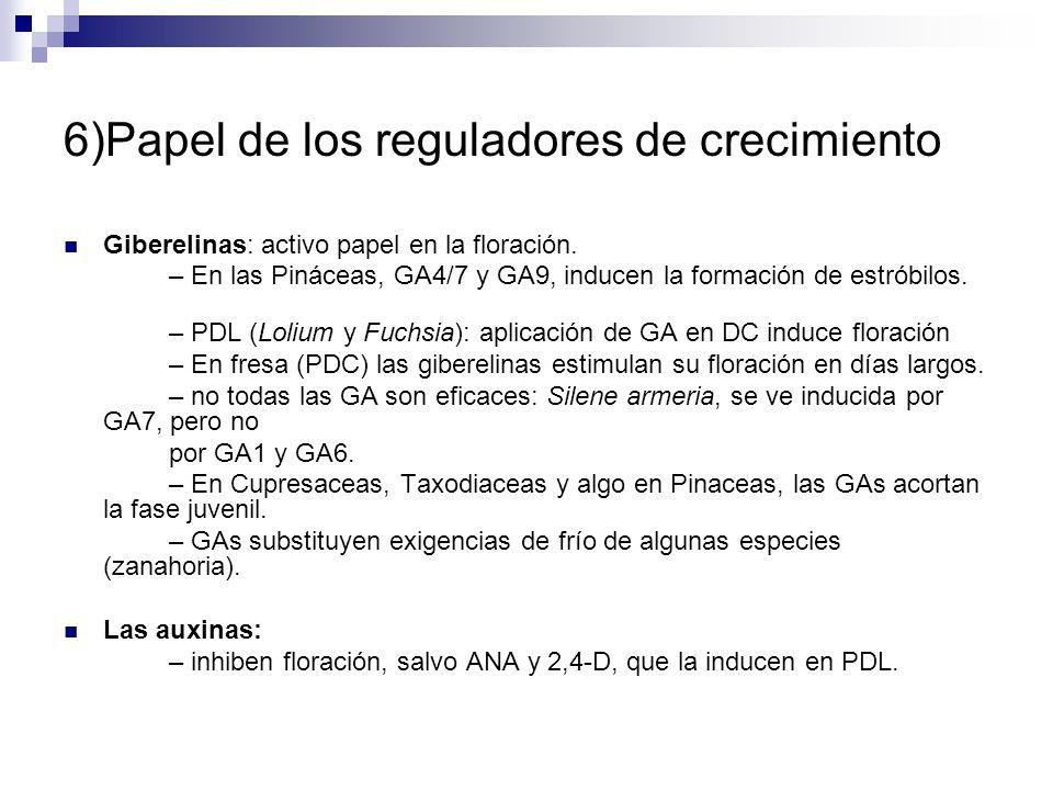 6)Papel de los reguladores de crecimiento