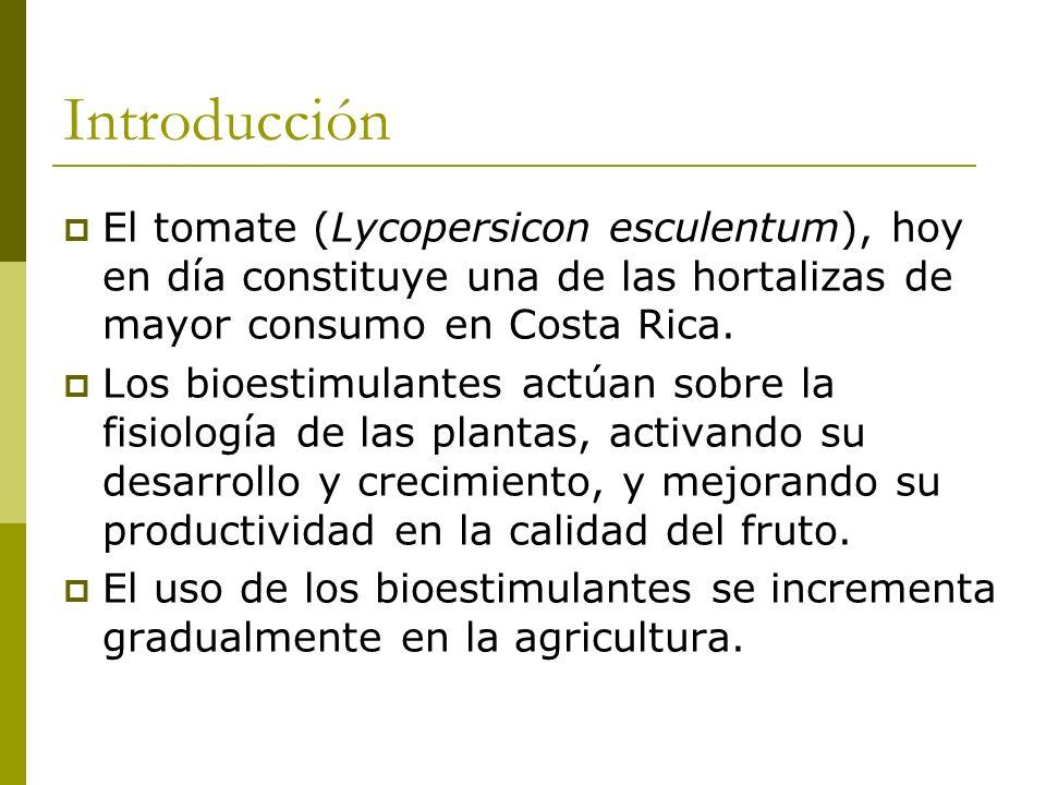 Introducción El tomate (Lycopersicon esculentum), hoy en día constituye una de las hortalizas de mayor consumo en Costa Rica.