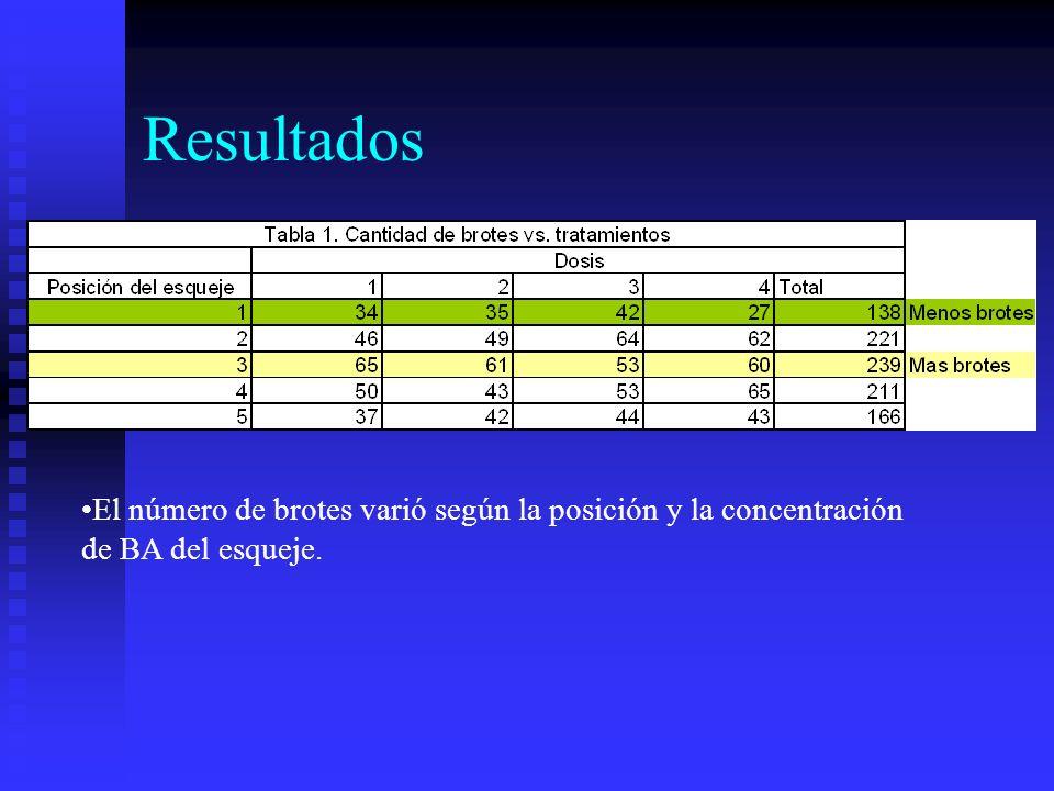 Resultados El número de brotes varió según la posición y la concentración de BA del esqueje.