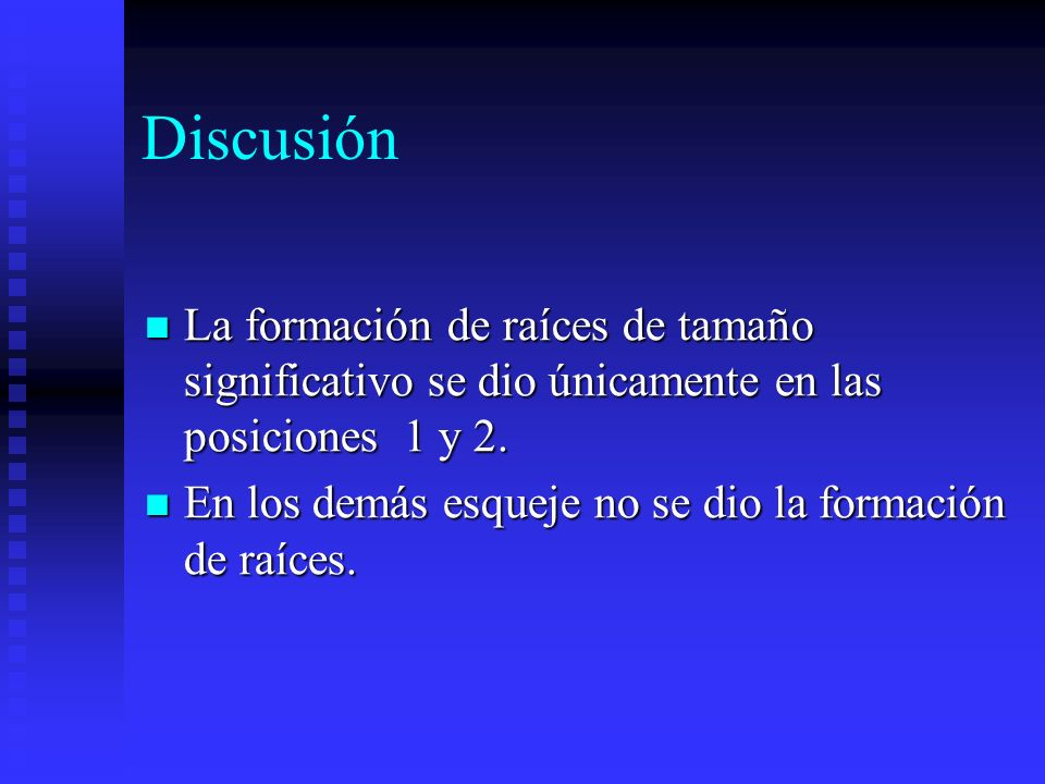 DiscusiónLa formación de raíces de tamaño significativo se dio únicamente en las posiciones 1 y 2.