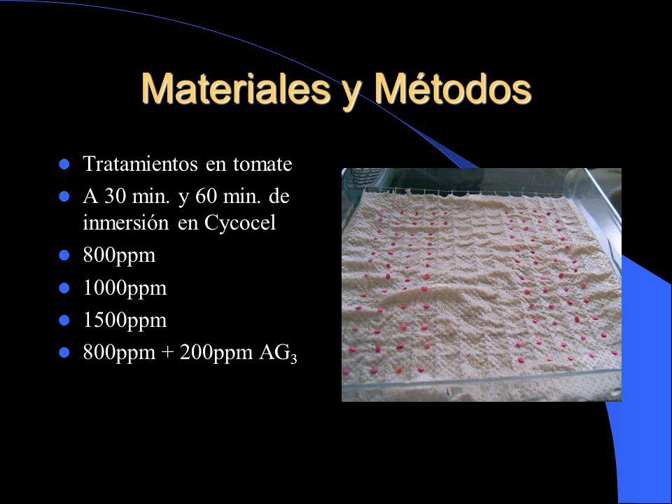 Materiales y Métodos Tratamientos en tomate