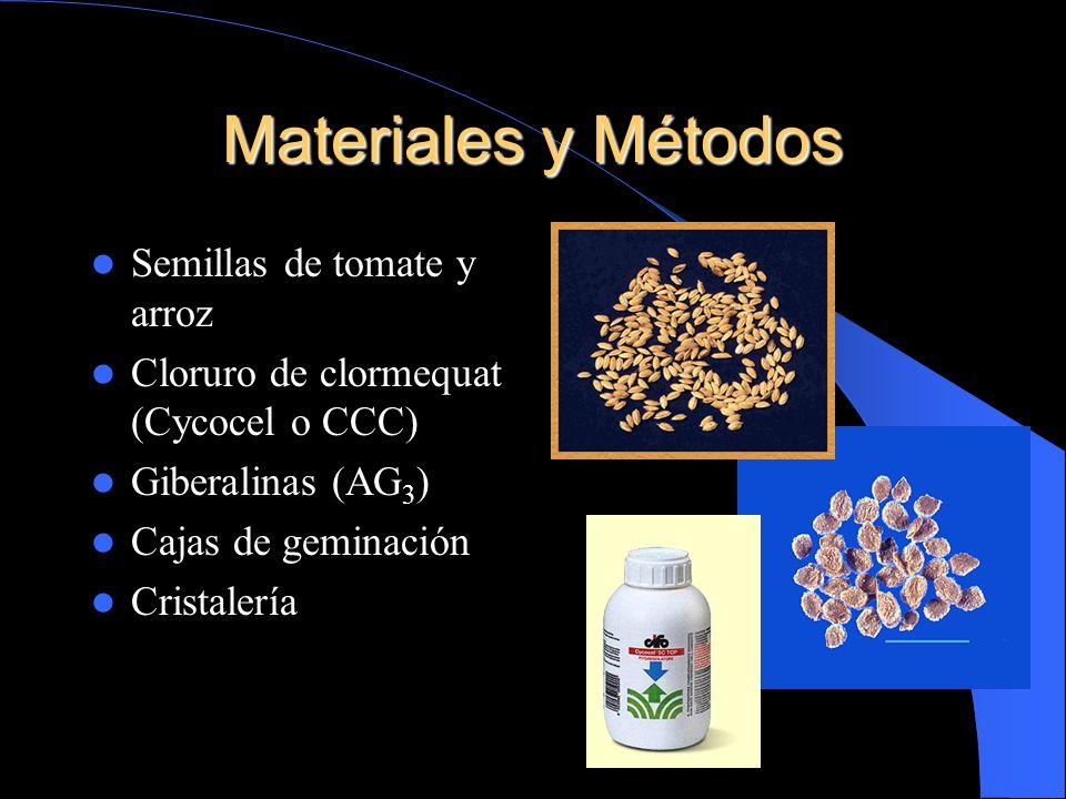 Materiales y Métodos Semillas de tomate y arroz