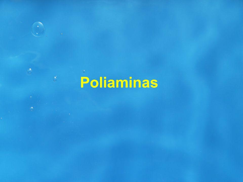 Poliaminas