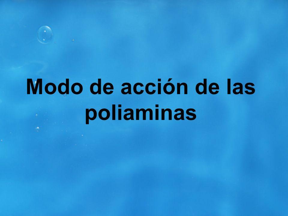 Modo de acción de las poliaminas