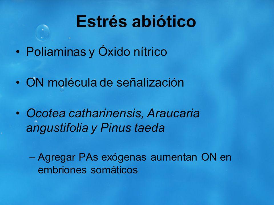 Estrés abiótico Poliaminas y Óxido nítrico ON molécula de señalización