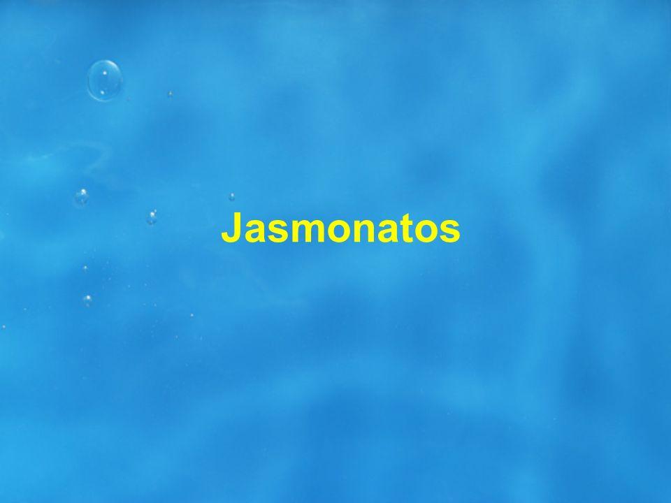 Jasmonatos