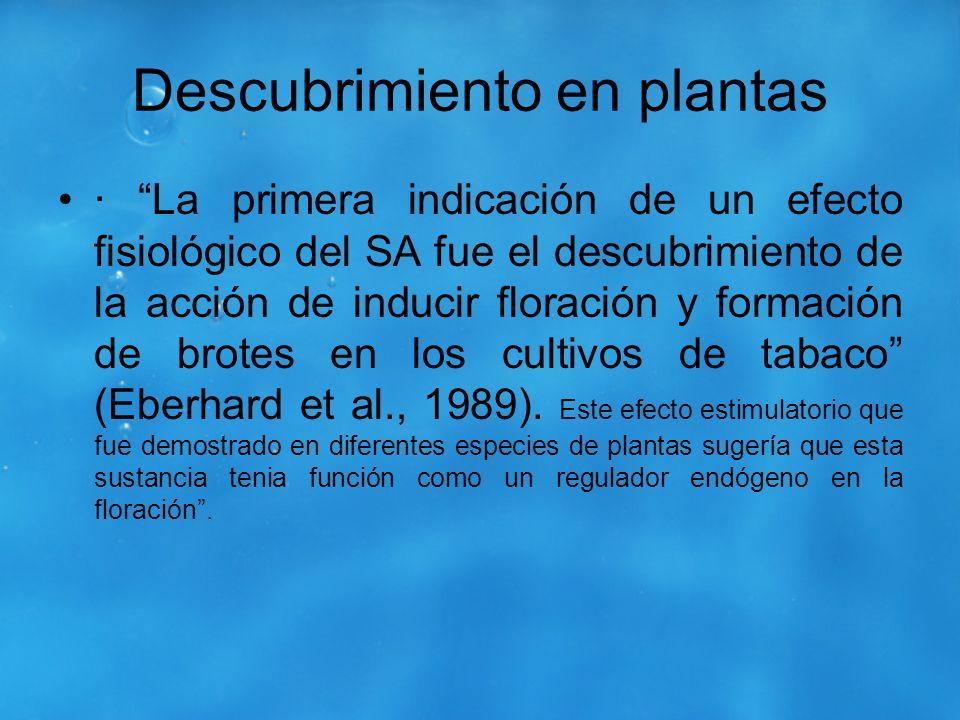 Descubrimiento en plantas