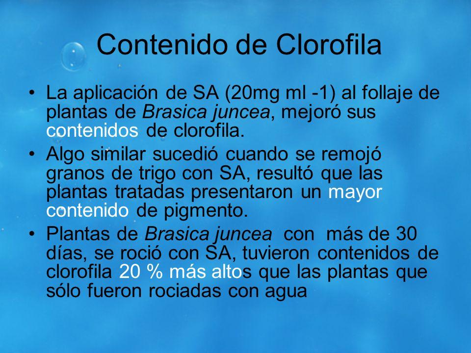 Contenido de Clorofila