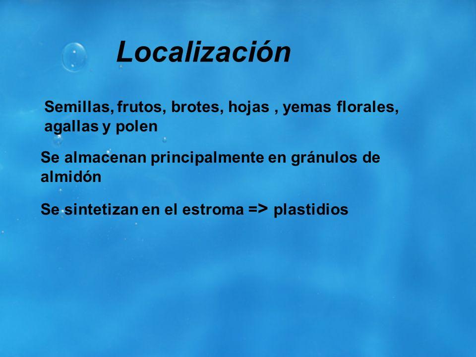 Localización Semillas, frutos, brotes, hojas , yemas florales, agallas y polen. Se almacenan principalmente en gránulos de almidón.