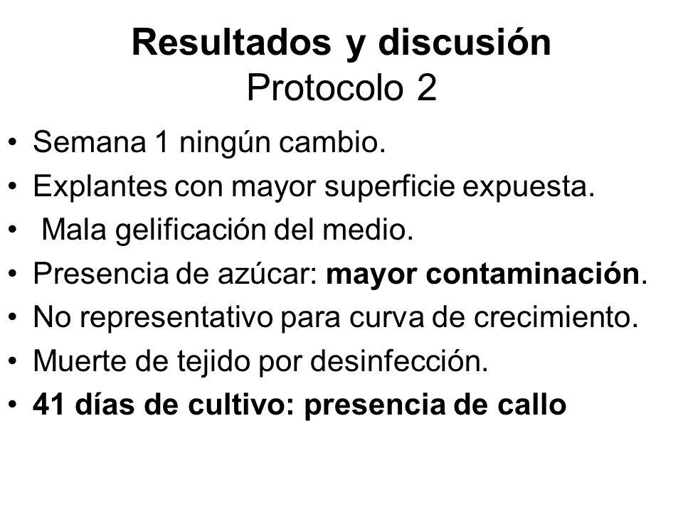 Resultados y discusión Protocolo 2