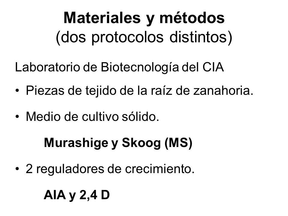 Materiales y métodos (dos protocolos distintos)