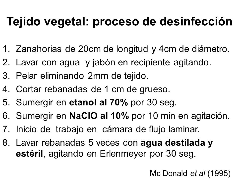 Tejido vegetal: proceso de desinfección