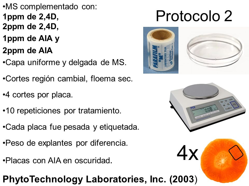 4x Protocolo 2 PhytoTechnology Laboratories, Inc. (2003)