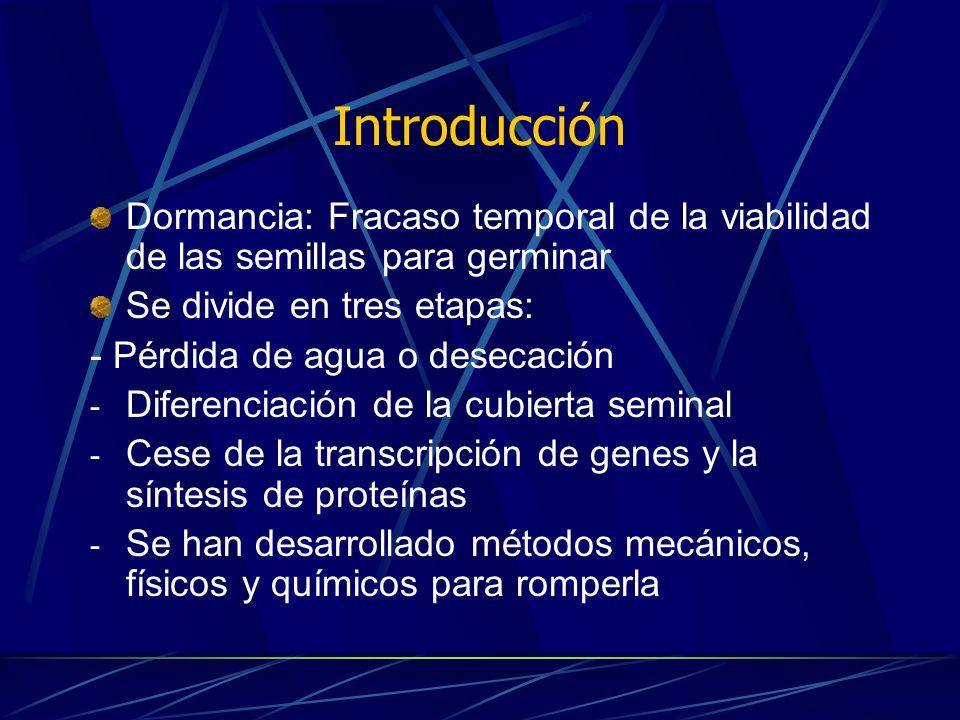 Introducción Dormancia: Fracaso temporal de la viabilidad de las semillas para germinar. Se divide en tres etapas: