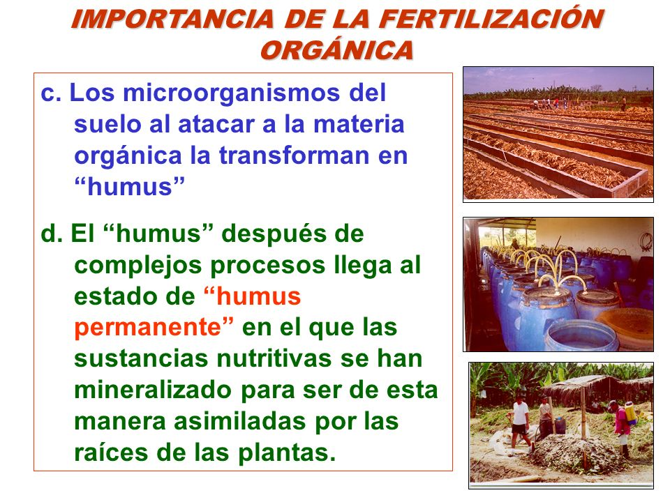 IMPORTANCIA DE LA FERTILIZACIÓN ORGÁNICA