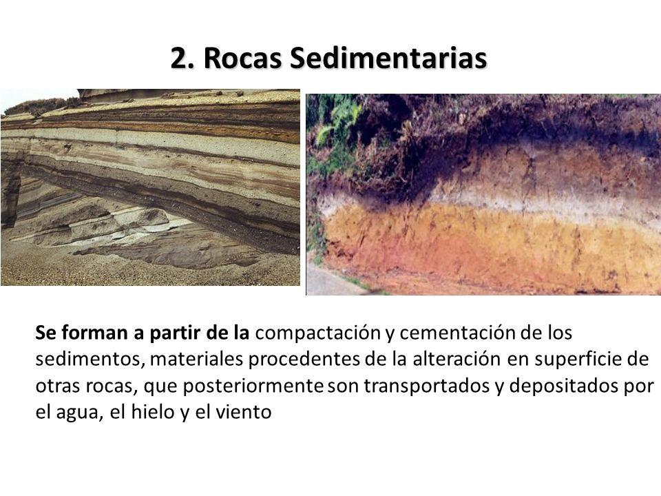 2. Rocas Sedimentarias