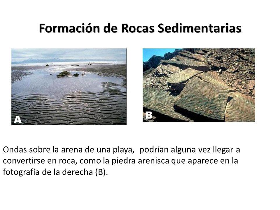 Formación de Rocas Sedimentarias