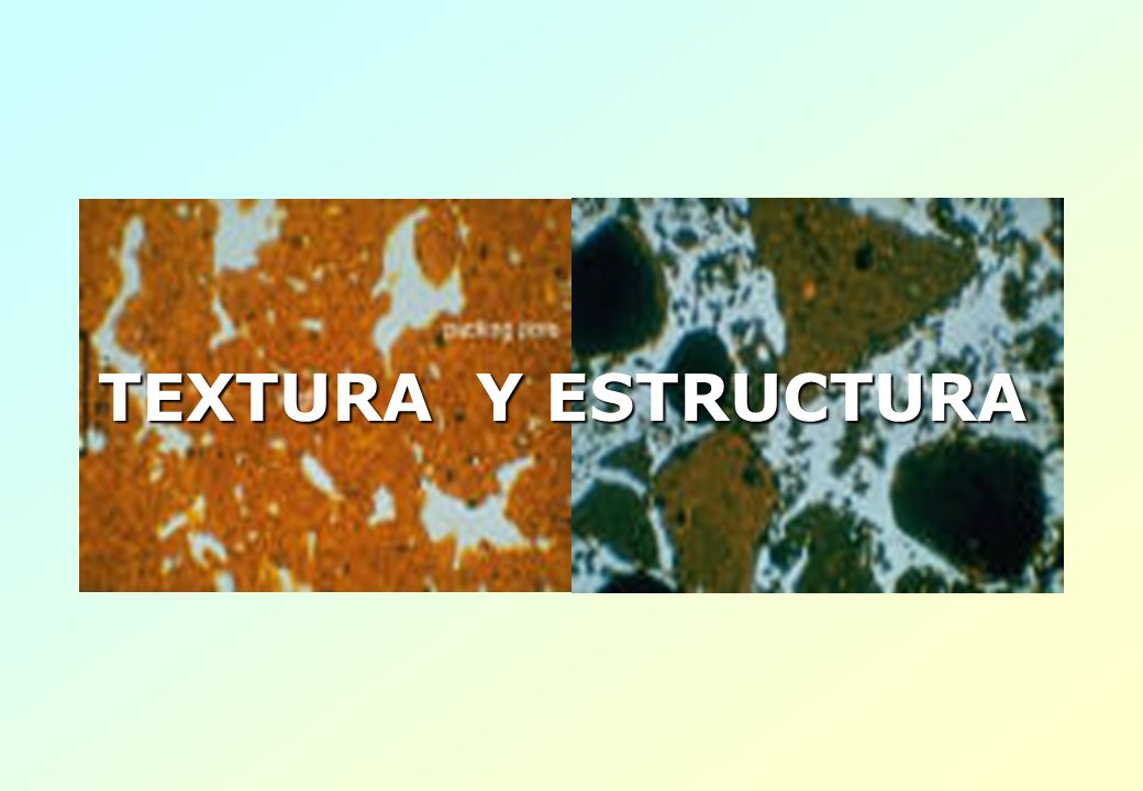 TEXTURA Y ESTRUCTURA
