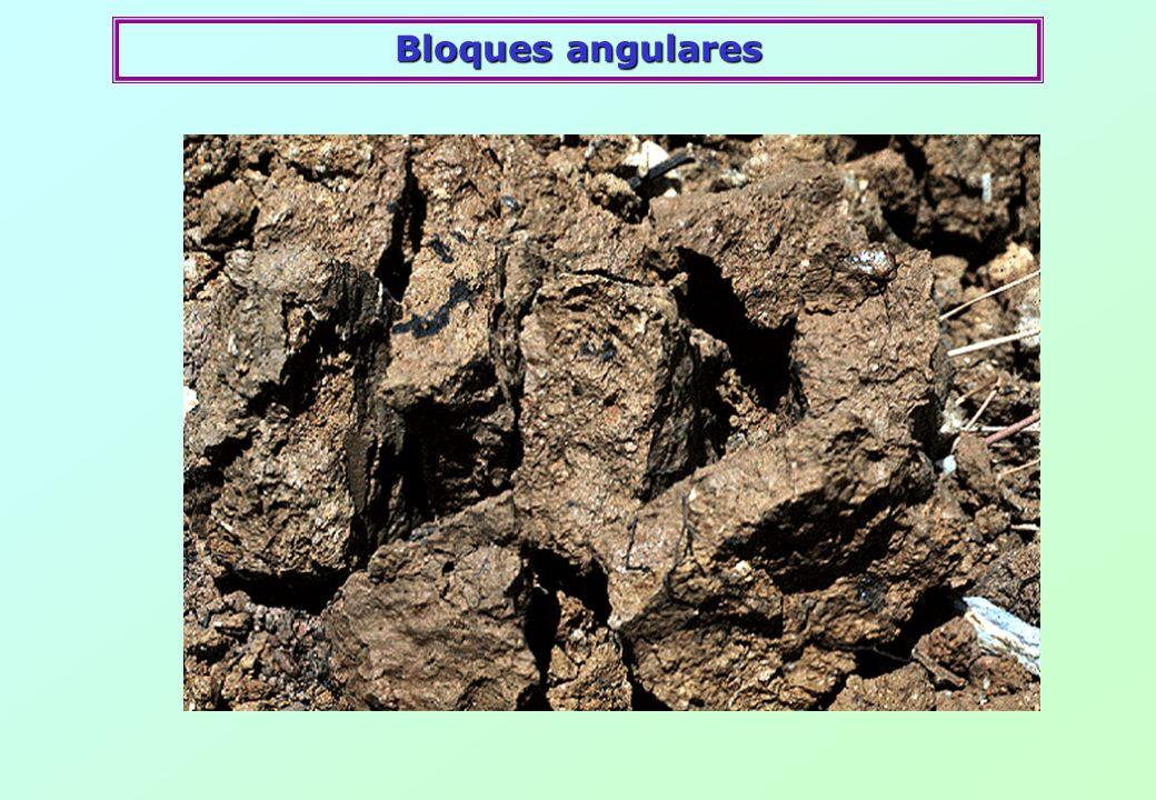 Bloques angulares