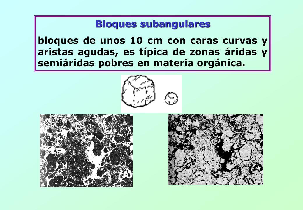 Bloques subangularesbloques de unos 10 cm con caras curvas y aristas agudas, es típica de zonas áridas y semiáridas pobres en materia orgánica.