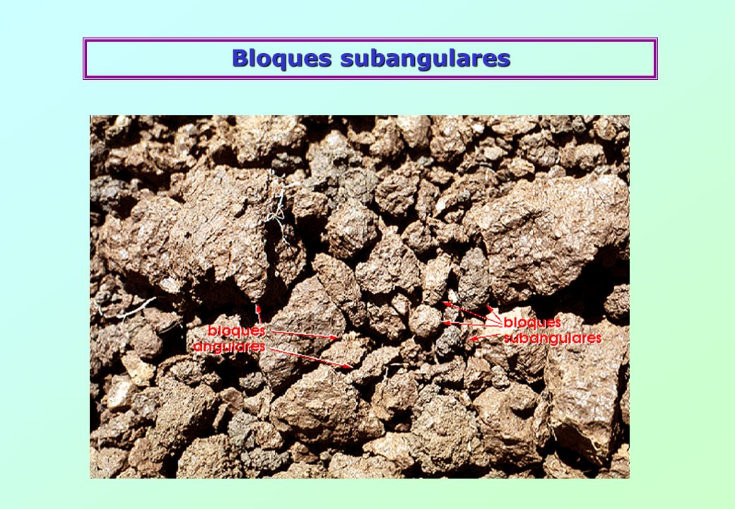 Bloques subangulares