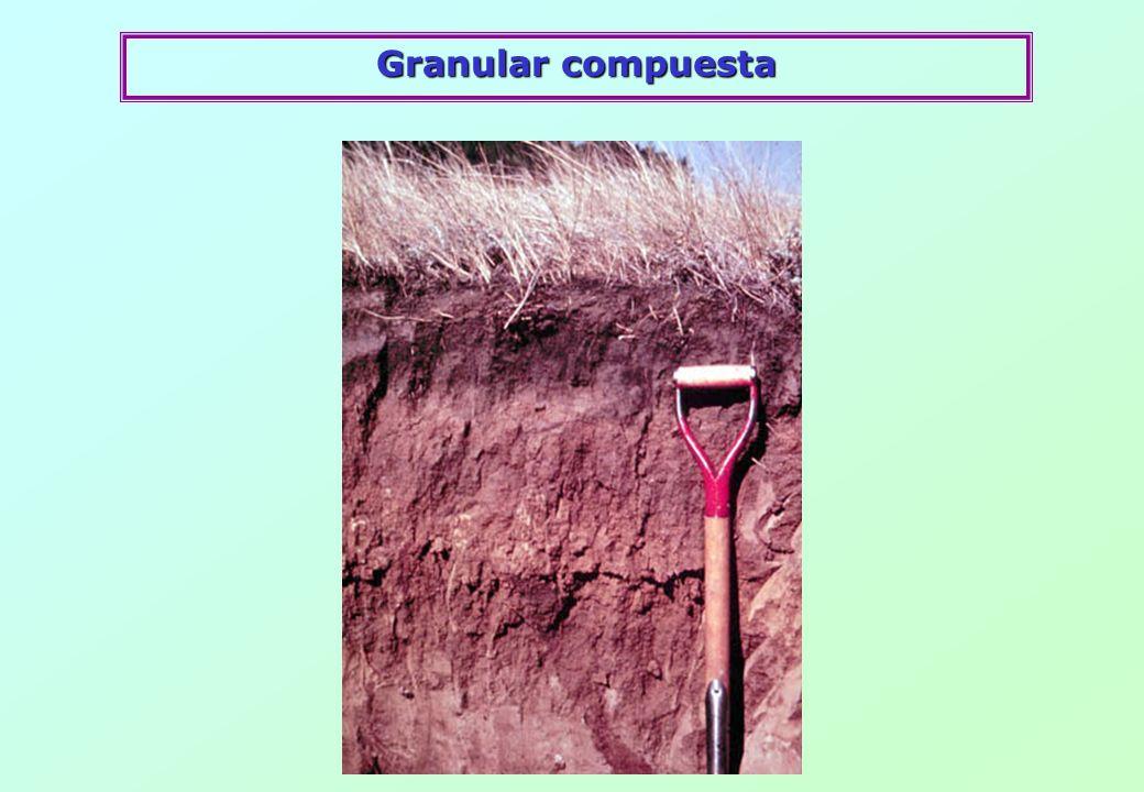 Granular compuesta