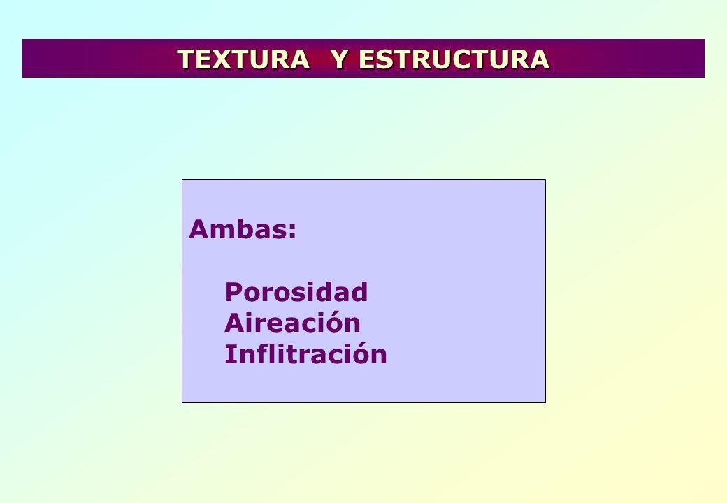 TEXTURA Y ESTRUCTURA Ambas: Porosidad Aireación Inflitración