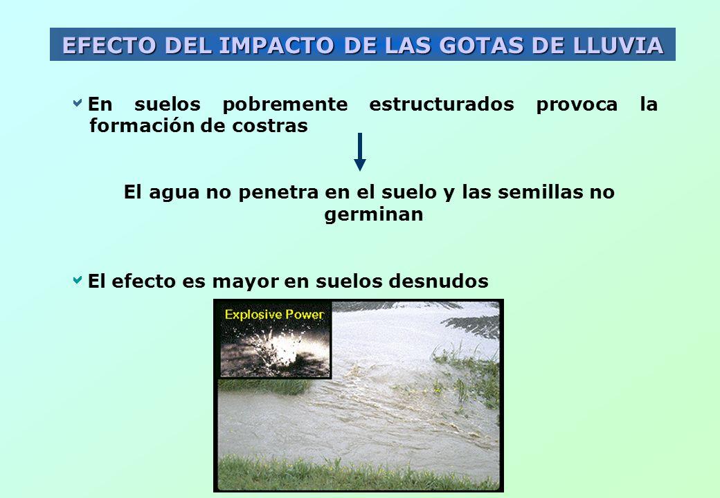 EFECTO DEL IMPACTO DE LAS GOTAS DE LLUVIA