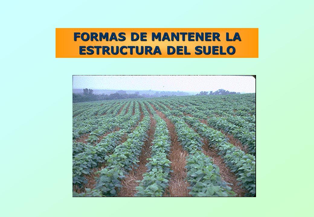 FORMAS DE MANTENER LA ESTRUCTURA DEL SUELO