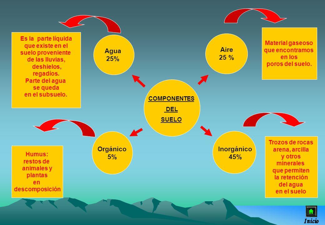 Agua 25% Aire 25 % Orgánico 5% Inorgánico 45%