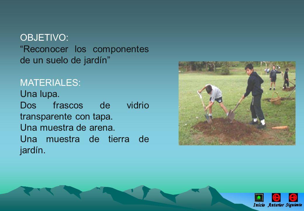 Reconocer los componentes de un suelo de jardín