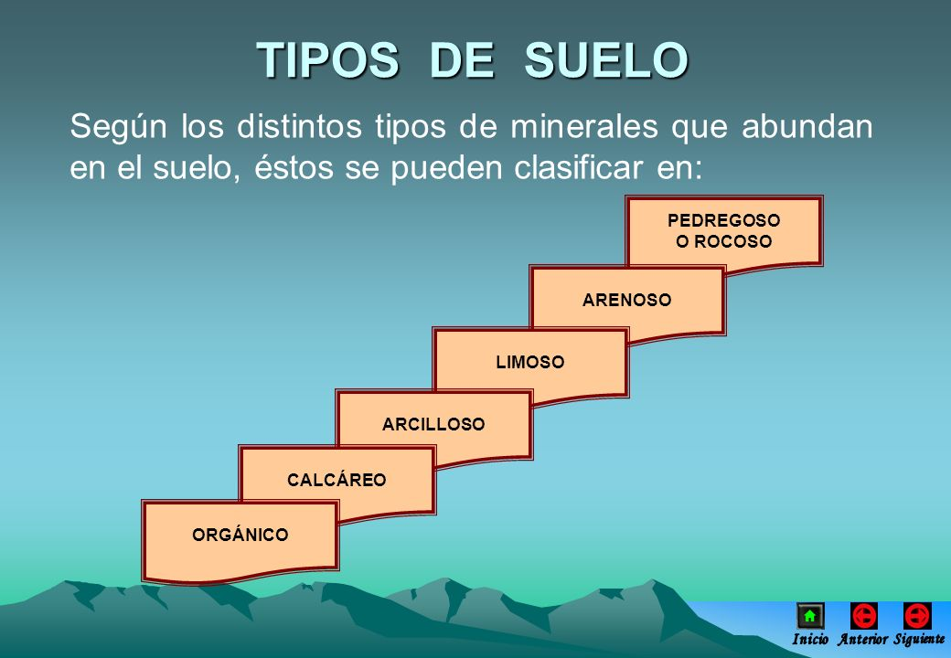 TIPOS DE SUELO Según los distintos tipos de minerales que abundan en el suelo, éstos se pueden clasificar en: