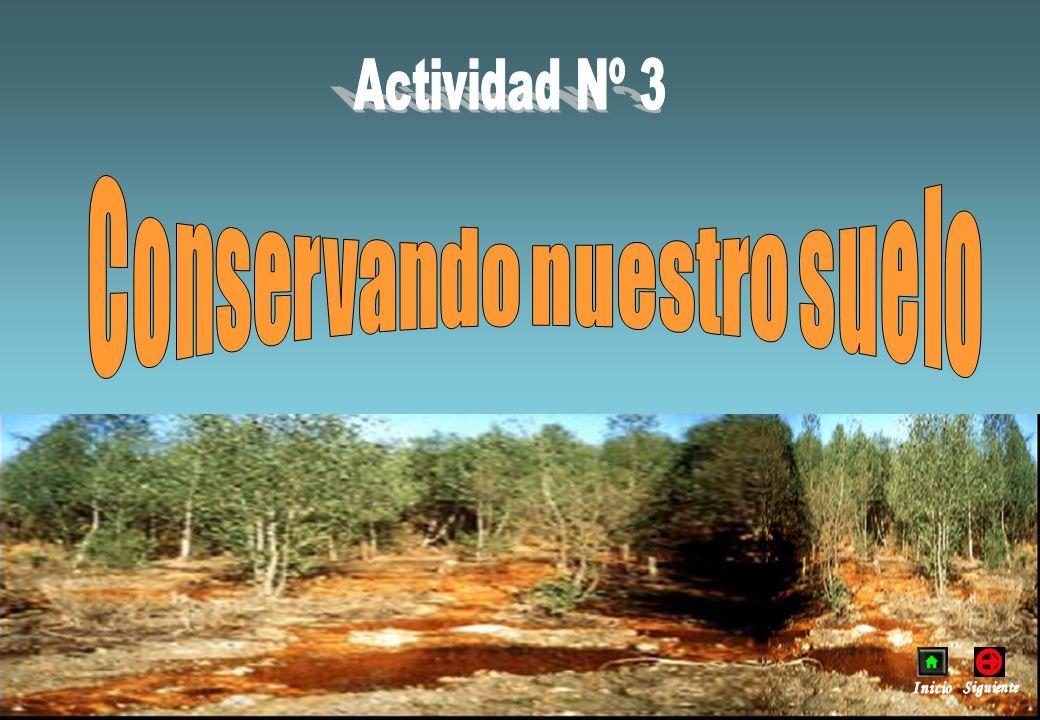 Conservando nuestro suelo