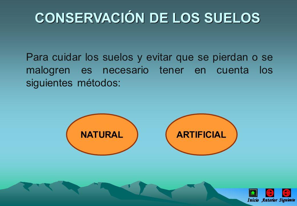 CONSERVACIÓN DE LOS SUELOS