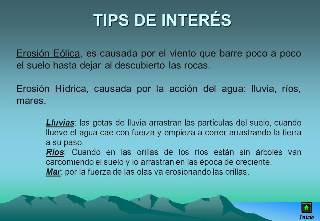 TIPS DE INTERÉSErosión Eólica, es causada por el viento que barre poco a poco el suelo hasta dejar al descubierto las rocas.