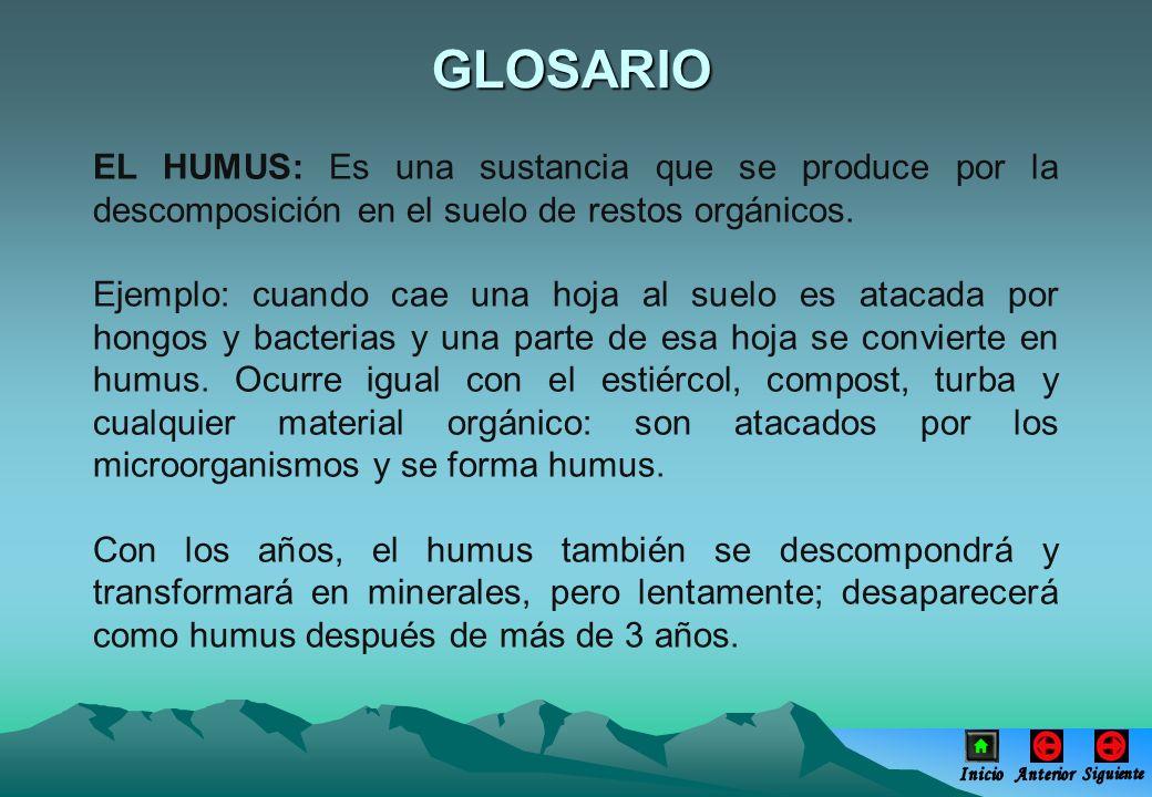 GLOSARIO EL HUMUS: Es una sustancia que se produce por la descomposición en el suelo de restos orgánicos.