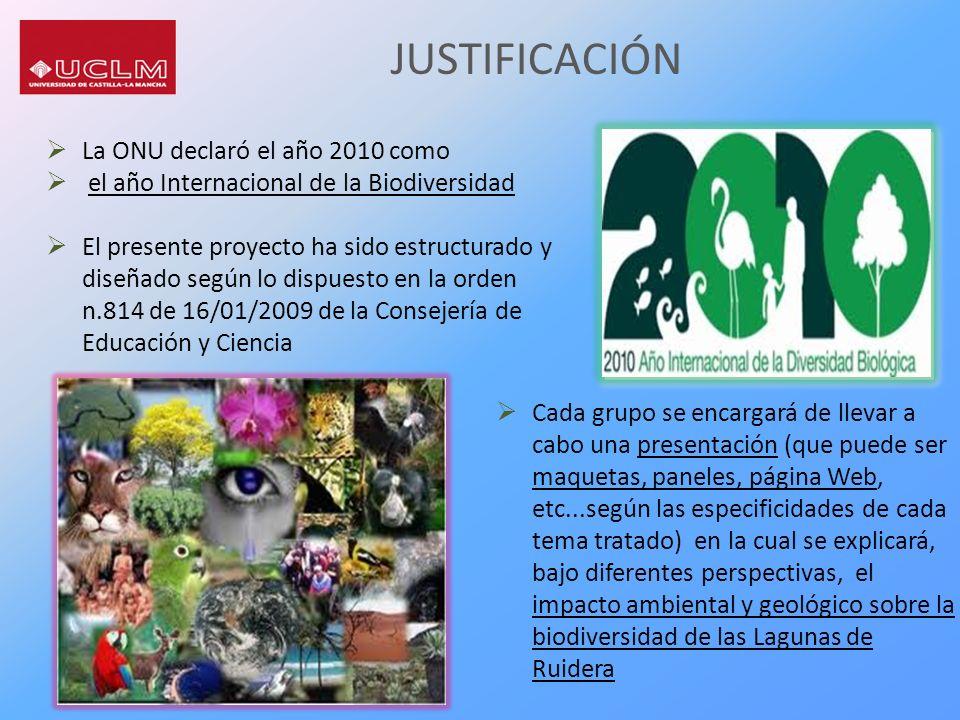 JUSTIFICACIÓN La ONU declaró el año 2010 como