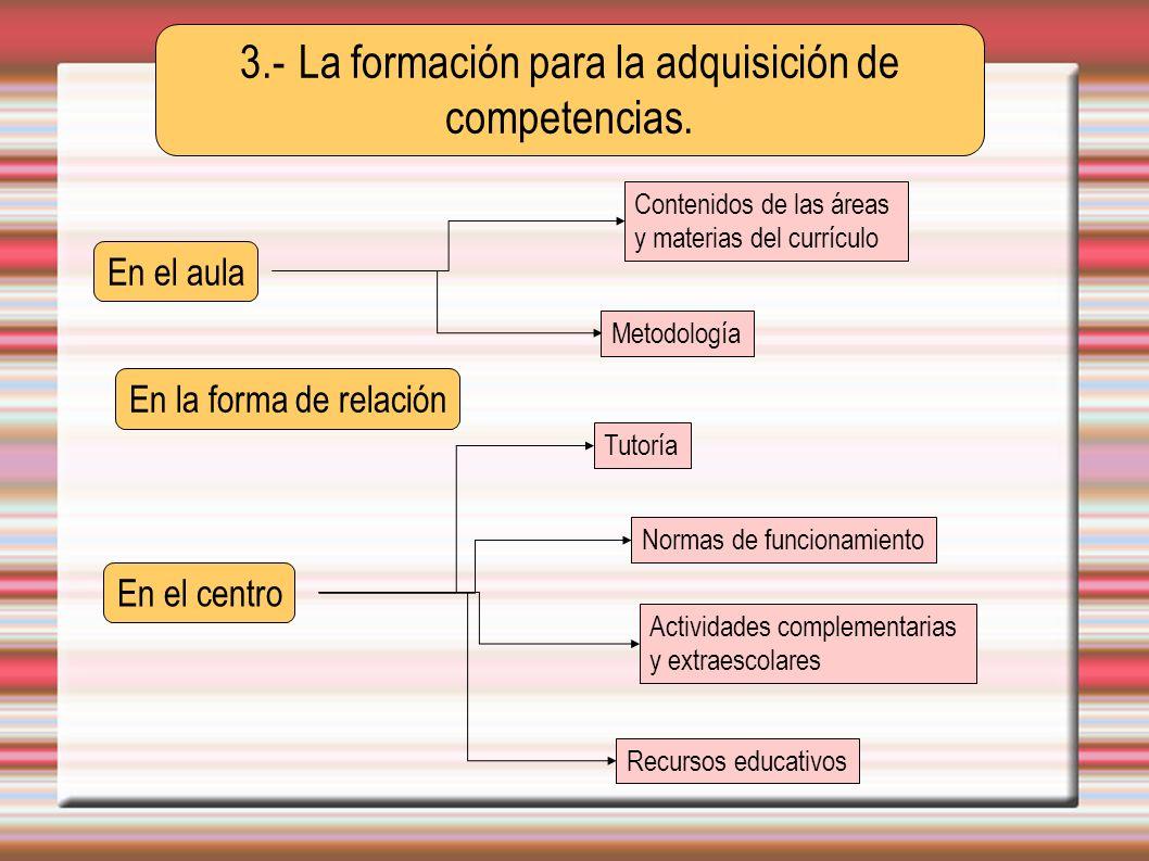 3.- La formación para la adquisición de competencias.