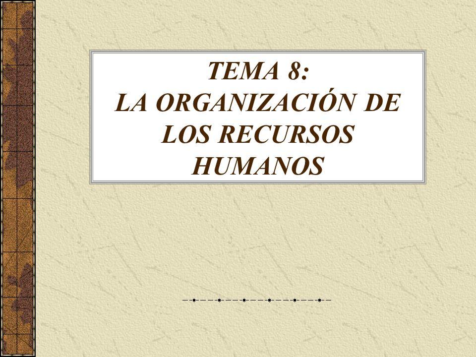 TEMA 8: LA ORGANIZACIÓN DE LOS RECURSOS HUMANOS