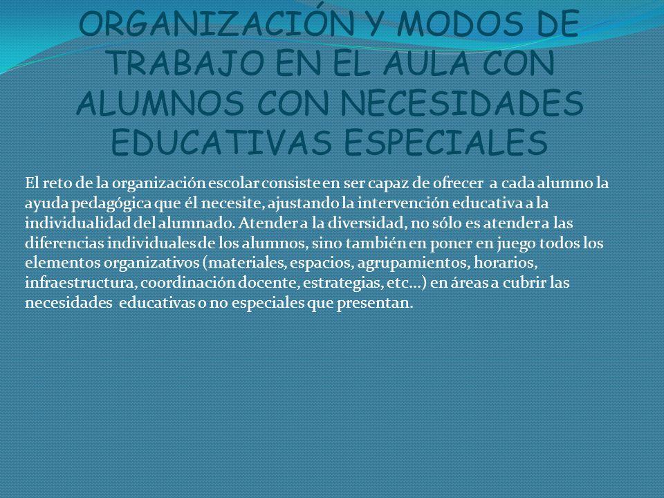 ORGANIZACIÓN Y MODOS DE TRABAJO EN EL AULA CON ALUMNOS CON NECESIDADES EDUCATIVAS ESPECIALES