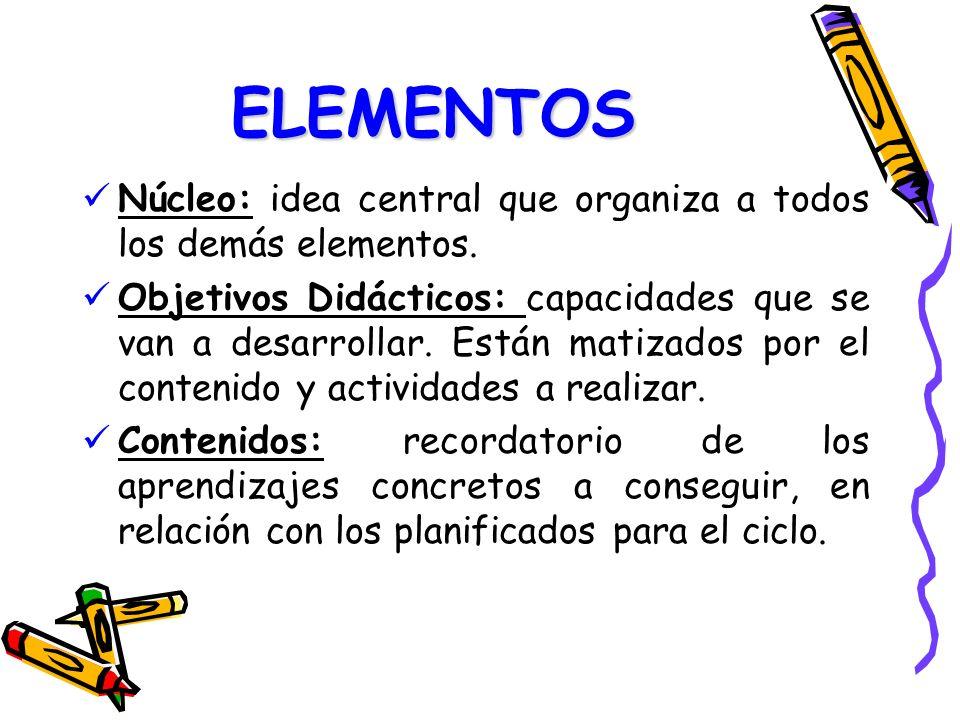 ELEMENTOS Núcleo: idea central que organiza a todos los demás elementos.